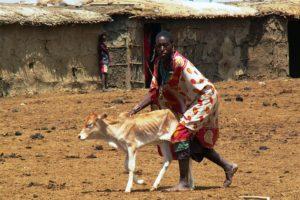 https://pimptheponyproductions.com/wp/wp-content/uploads/2019/10/FGM_masai_beschneiderin_kenya_cneudecker-300x200.jpg